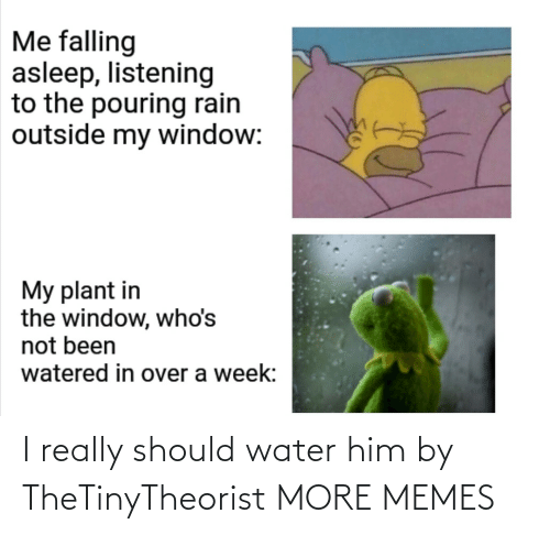 I Really: I really should water him by TheTinyTheorist MORE MEMES