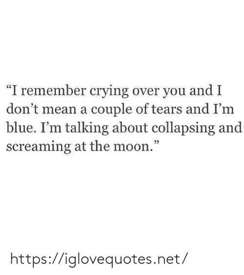 "A Couple Of: ""I remember crying over you and I  don't mean a couple of tears and I'm  blue. I'm talking about collapsing and  screaming at the moon."" https://iglovequotes.net/"