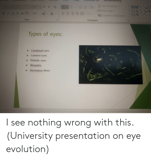 university: I see nothing wrong with this. (University presentation on eye evolution)
