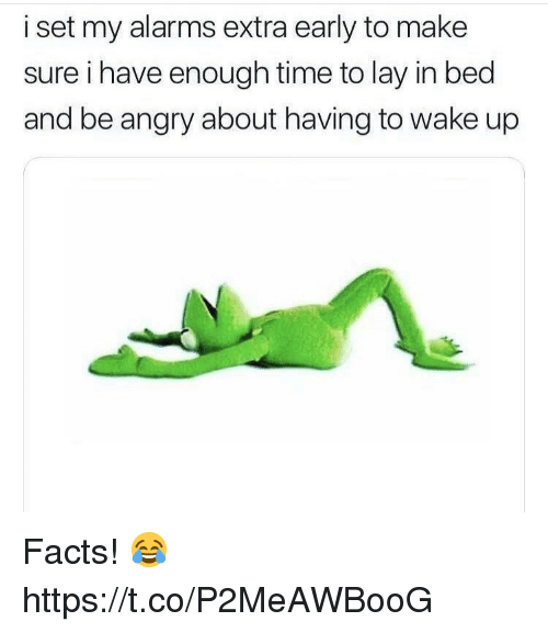 Facts, Time, and Angry: i set my alarms extra early to make  sure i have enough time to lay in bed  and be angry about having to wake up Facts! 😂 https://t.co/P2MeAWBooG