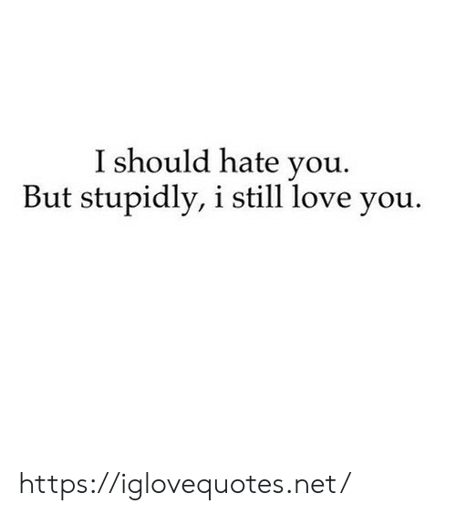 I Still Love: I should hate you.  But stupidly, i still love you https://iglovequotes.net/