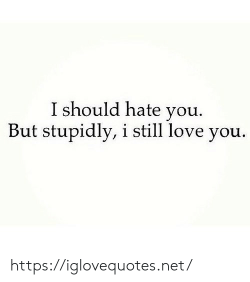 I Still Love: I should hate you.  But stupidly, i still love you. https://iglovequotes.net/
