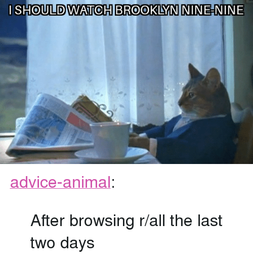 """Advice, Tumblr, and Brooklyn: I SHOULDWATICH BROOKLYN NINE-NINE <p><a href=""""http://advice-animal.tumblr.com/post/173878460594/after-browsing-rall-the-last-two-days"""" class=""""tumblr_blog"""">advice-animal</a>:</p>  <blockquote><p>After browsing r/all the last two days</p></blockquote>"""