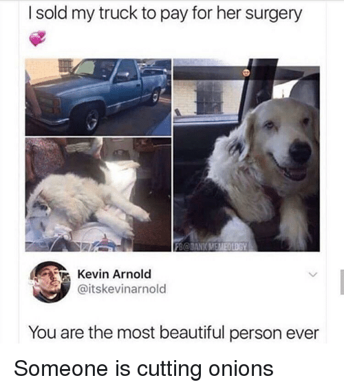 Beautiful, Her, and Arnold: I sold my truck to pay for her surgery  Kevin Arnold  @itskevinarnold  You are the most beautiful person ever Someone is cutting onions