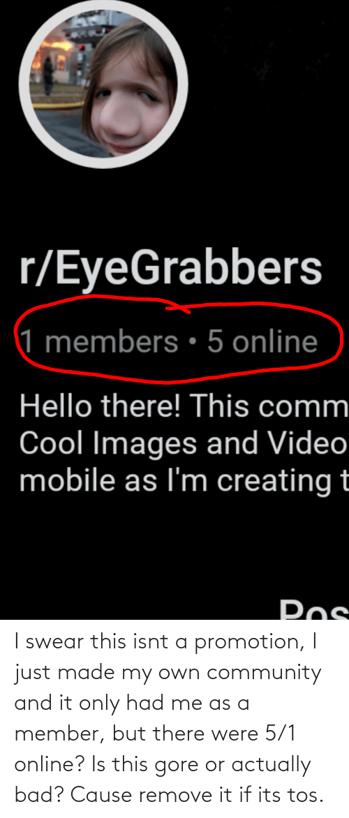promotion: I swear this isnt a promotion, I just made my own community and it only had me as a member, but there were 5/1 online? Is this gore or actually bad? Cause remove it if its tos.