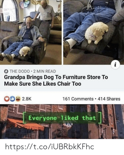 Memes, Grandpa, and Furniture: i  THE DODO 2 MIN READ  Grandpa Brings Dog To Furniture Store To  Make Sure She Likes Chair Too  OD 2.8K  161 Comments 414 Shares  Everyone 1iked that https://t.co/iUBRbkKFhc