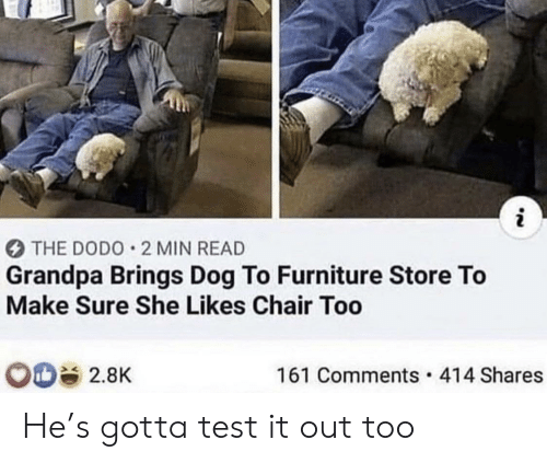 She Likes: i  THE DODO 2 MIN READ  Grandpa Brings Dog To Furniture Store To  Make Sure She Likes Chair Too  161 Comments 414 Shares  2.8K He's gotta test it out too