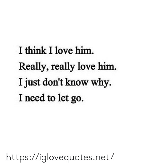 Just Dont: I think I love him.  Really, really love him.  I just don't know why  I need to let go https://iglovequotes.net/