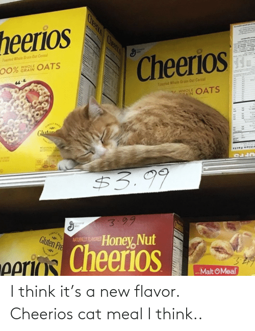 Meal: I think it's a new flavor. Cheerios cat meal I think..