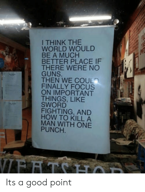Guns, Focus, and Good: I THINK THE  WORLD WOULD  BE A MUCH  BETTER PLACE IF  THERE WERE NO  GUNS.  THEN WE COUL  FINALLY FOCUS  ON IMPORTANT  THINGS, LIKE  SWORD  FIGHTING, AND  HOW TO KILL A  MAN WITH ONE  PUNCH  8 Its a good point