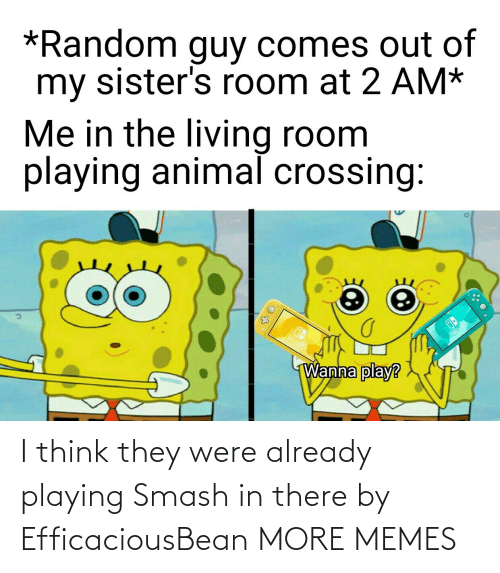 Smashing: I think they were already playing Smash in there by EfficaciousBean MORE MEMES