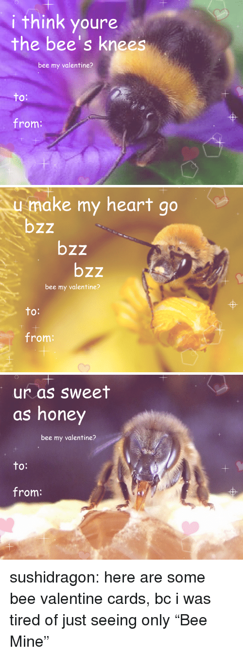 "To From: i think youre  the bee's knees  bee my valentine?  to  O:  from:   1  make my heart go  bzz  bzz  bzz  bee my valentine?  to  O:  from:   1  1  ur as sweet  as honey  bee my valentine?  to:  from: sushidragon: here are some bee valentine cards, bc i was tired of just seeing only ""Bee Mine"""
