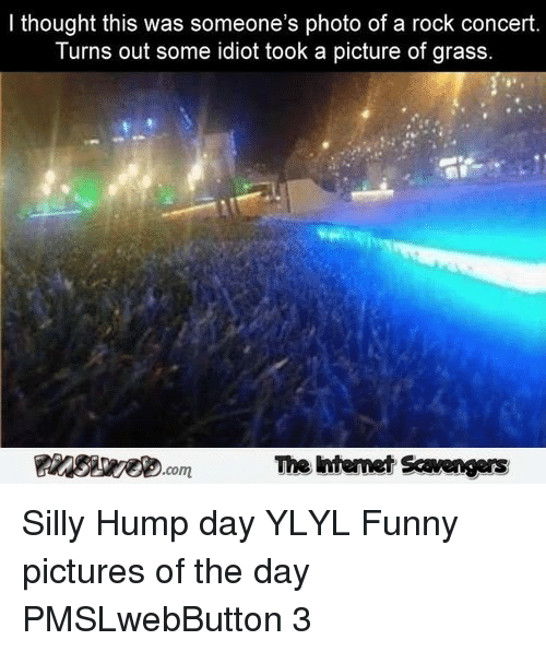 Funny Pictures Of The Day: I thought this was someone's photo of a rock concert  Turns out some idiot took a picture of grass  The Intemet Scavengers <p>Silly Hump day YLYL  Funny pictures of the day  PMSLwebButton 3 </p>