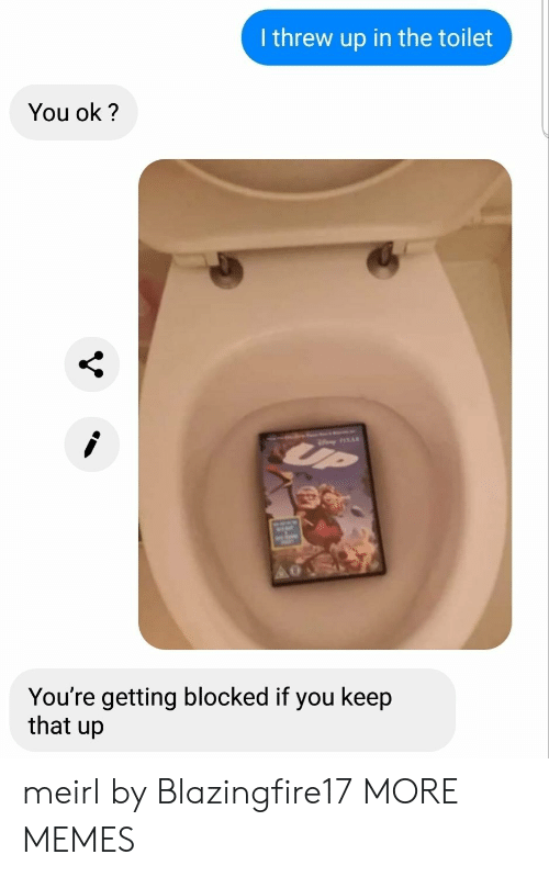 Dank, Memes, and Target: I threw up in the toilet  You ok?  UP  You're getting blocked if you keep  that up meirl by Blazingfire17 MORE MEMES