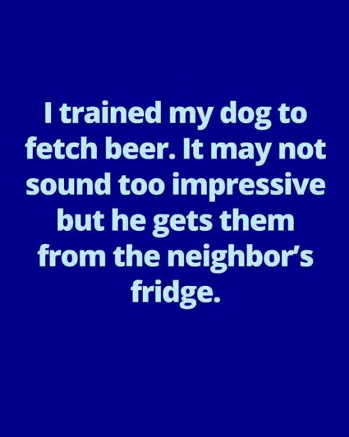 fetch: I trained my dog to  fetch beer. It may not  sound too impressive  but he gets them  from the neighbor's  fridge.