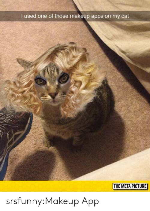 Makeup, Tumblr, and Apps: I used one of those makeup apps on my cat  THE META PICTURE srsfunny:Makeup App