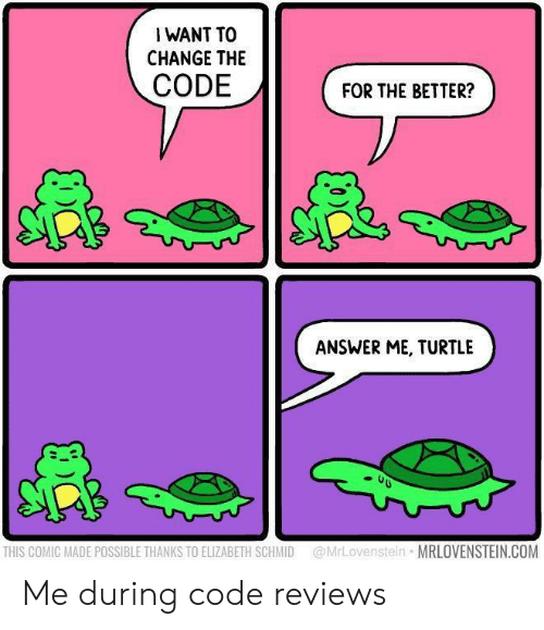 Reviews: I WANT TO  CHANGE THE  CODE  FOR THE BETTER?  ANSWER ME, TURTLE  @MrLovenstein MRLOVENSTEIN.COM  THIS COMIC MADE POSSIBLE THANKS TO ELIZABETH SCHMID Me during code reviews