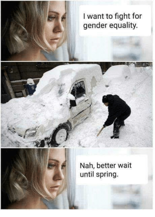 Memes, Spring, and Fight: I want to fight for  gender equality.  Nah, better wait  until spring