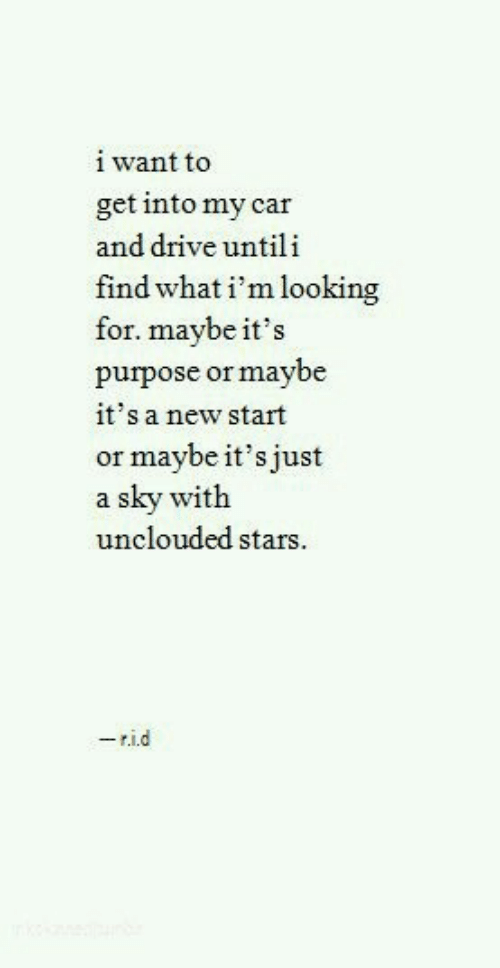 Drive, Stars, and Car: i want to  get into my car  and drive untili  find what i'm looking  for. maybe it's  purpose or maybe  it's a new start  or maybe it's just  a sky with  unclouded stars  8  -rid