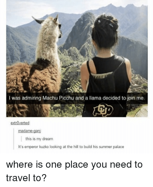 machu picchu: I was admiring Machu Picchu and a llama decided to join me.  extrOvertesd  this is my dream  It's emperor kuzko looking at the hill to build his summer palace where is one place you need to travel to?