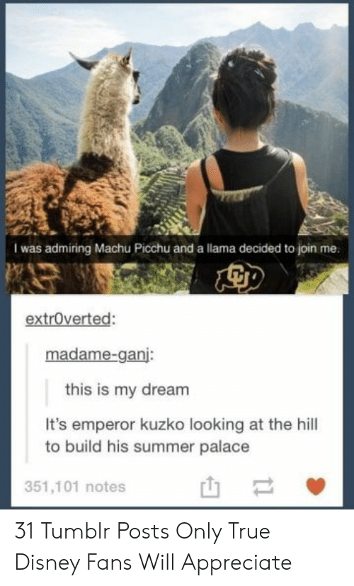 Disney, True, and Tumblr: I was admiring Machu Picchu and a llama decided to join me.  extroverted:  madame-ganj:  this is my dream  It's emperor kuzko looking at the hill  to build his summer palace  351,101 notes  t1 31 Tumblr Posts Only True Disney Fans Will Appreciate