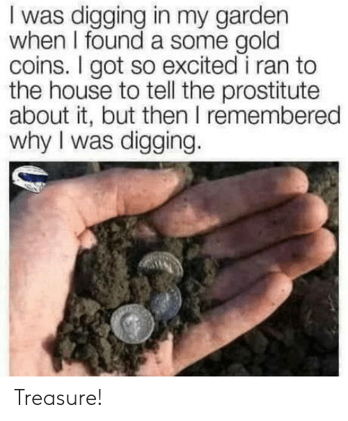 Garden: I was digging in my garden  when I found a some gold  coins. I got so excited i ran to  the house to tell the prostitute  about it, but then I remembered  why I was digging. Treasure!
