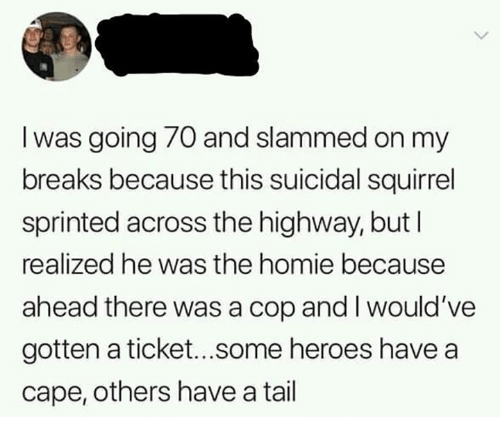 Homie, Heroes, and Squirrel: I was going 70 and slammed on my  breaks because this suicidal squirrel  sprinted across the highway, but l  realized he was the homie because  ahead there was a cop and I would've  gotten a ticket...some heroes have a  cape, others have a tail