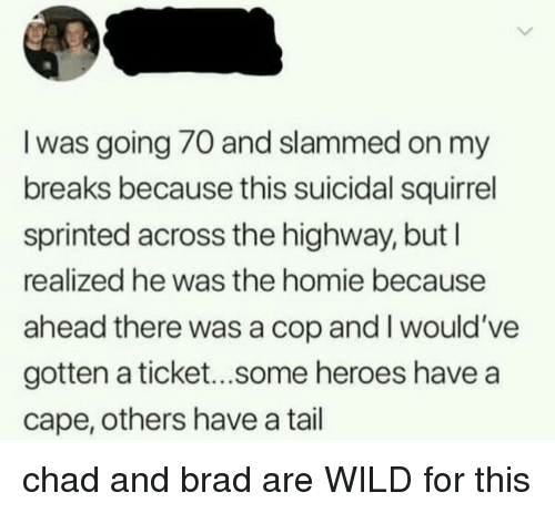 slammed: I was going 70 and slammed on my  breaks because this suicidal squirrel  sprinted across the highway, but l  realized he was the homie because  ahead there was a cop and I would've  gotten a ticket...some heroes have a  cape, others have a tail chad and brad are WILD for this