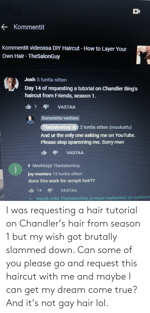 season 1: I was requesting a hair tutorial on Chandler's hair from season 1 but my wish got brutally slammed down. Can some of you please go and request this haircut with me and maybe I can get my dream come true? And it's not gay hair lol.