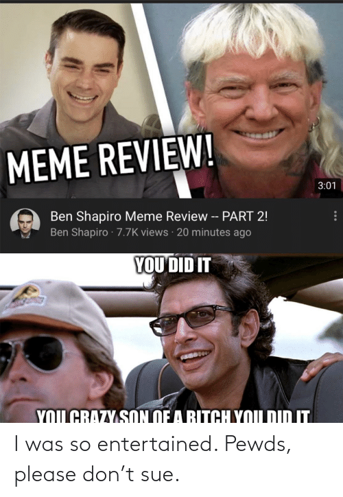 Please Don: I was so entertained. Pewds, please don't sue.