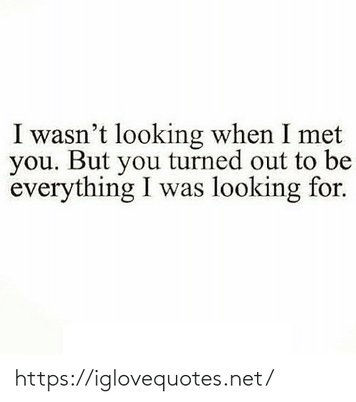 Looking For: I wasn't looking when I met  you. But you turned out to be  everything I was looking for. https://iglovequotes.net/