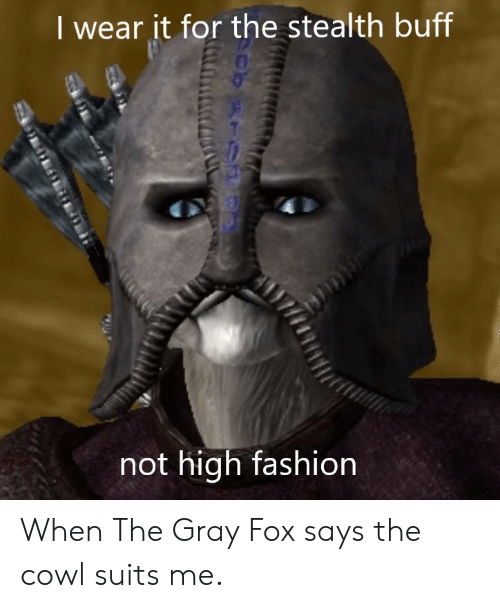 high fashion: I wear it for the stealth buff  not high fashion When The Gray Fox says the cowl suits me.