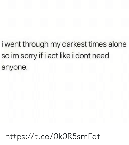 Being Alone, Memes, and Sorry: i went through my darkest times alone  so im sorry if i act like i dont need  anyone. https://t.co/0k0R5smEdt