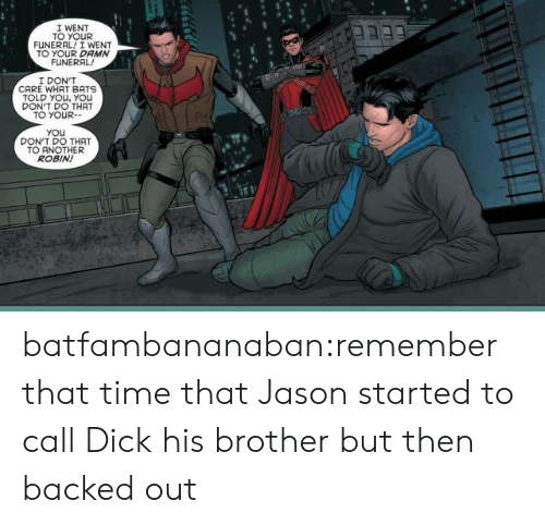 bats: I WENT  TO YOUR  FUNERAL! I WENT  TO YOUR DAMN  FUNERAL  I DON'T  CARE WHAT BATS  TOLD YOu, YOu  DON'T DO THAT  TO YOUR-  You  DON'T DO THAT  TO ANOTHER  ROBIN! batfambananaban:remember that time that Jason started to call Dick his brother but then backed out