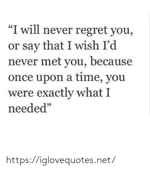 "exactly: ""I will never regret you,  or say that I wish I'd  never met you, because  once upon a time, you  were exactly what I  needed"" https://iglovequotes.net/"