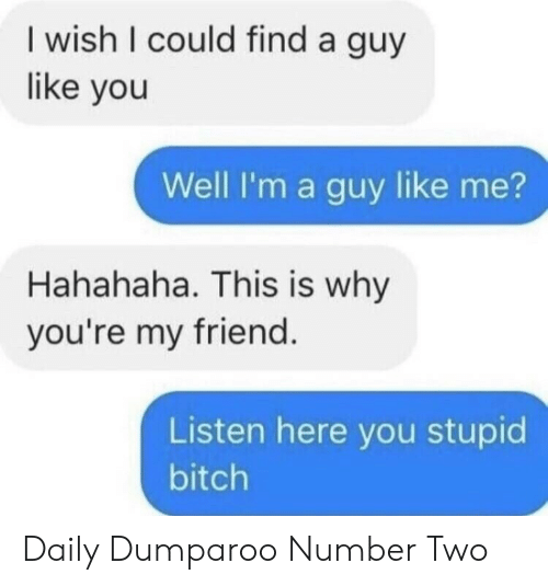 Bitch, Friend, and Why: I wish I could find a guy  like you  Well I'm a guy like me?  Hahahaha. This is why  you're my friend  Listen here you stupid  bitch Daily Dumparoo Number Two