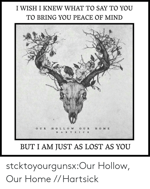 peace of mind: I WISH I KNEW WHAT TO SAY TO YOU  TO BRING YOU PEACE OF MIND  O UR H O LL OWO U R H O M E  H ART S IC K  BUT I AM JUST AS LOST AS YOU stcktoyourgunsx:Our Hollow, Our Home // Hartsick