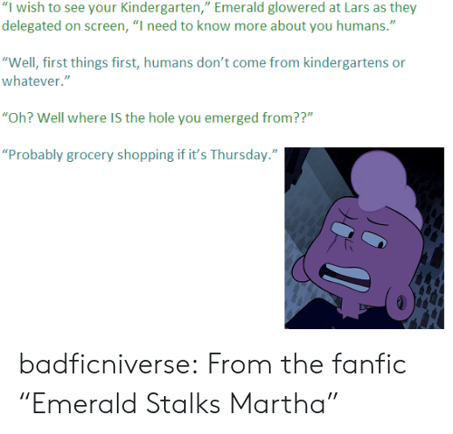 "fanfic: ""I wish to see your Kindergarten,"" Emerald glowered at Lars as they  delegated on screen, ""I need to know more about you humans.""  ""Well, first things first, humans don't come from kindergartens or  whatever.""  ""Oh? Well where IS the hole you emerged from??""  ""Probably grocery shopping if it's Thursday."" badficniverse:  From the fanfic ""Emerald Stalks Martha"""