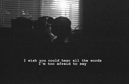 All The, The Words, and All: I wish you could hear all the words  m too afraid to say