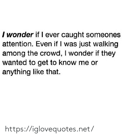 attention: I wonder if I ever caught someones  attention. Even if I was just walking  among the crowd, I wonder if they  wanted to get to know me or  anything like that. https://iglovequotes.net/
