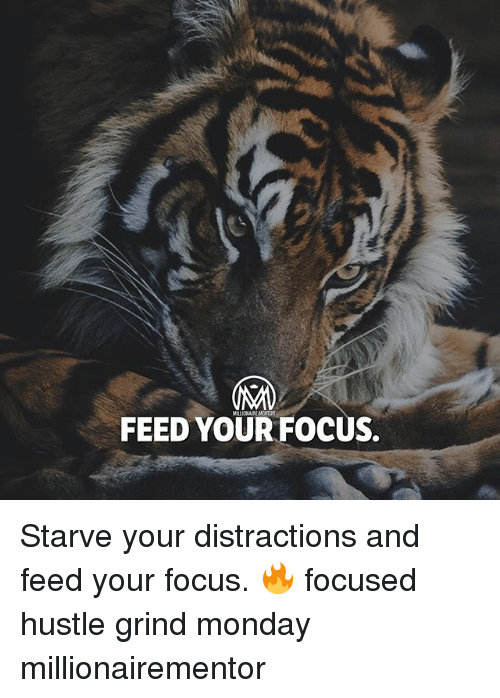 Distractions: IAM  FEED YOUR FOCUS. Starve your distractions and feed your focus. 🔥 focused hustle grind monday millionairementor