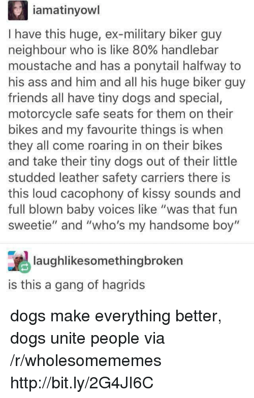 "Ass, Dogs, and Friends: iamatinyowl  I have this huge, ex-military biker guy  neighbour who is like 80% handlebar  moustache and has a ponytail halfway to  his ass and him and all his huge biker guy  friends all have tiny dogs and special,  motorcycle safe seats for them on their  bikes and my favourite things is when  they all come roaring in on their bikes  and take their tiny dogs out of their little  studded leather safety carriers there is  this loud cacophony of kissy sounds and  full blown baby voices like ""was that fun  sweetie"" and ""who's my handsome boy""  laughlikesomethingbroken  is this a gang of hagrids dogs make everything better, dogs unite people via /r/wholesomememes http://bit.ly/2G4JI6C"