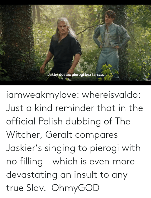 reminder: iamweakmylove:  whereisvaldo:  Just a kind reminder that in the official Polish dubbing of The Witcher, Geralt compares Jaskier's singing to pierogi with no filling - which is even more devastating an insult to any true Slav.    OhmyGOD