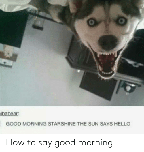 Hello, Good Morning, and Good: ibabear  GOOD MORNING STARSHINE THE SUN SAYS HELLO How to say good morning