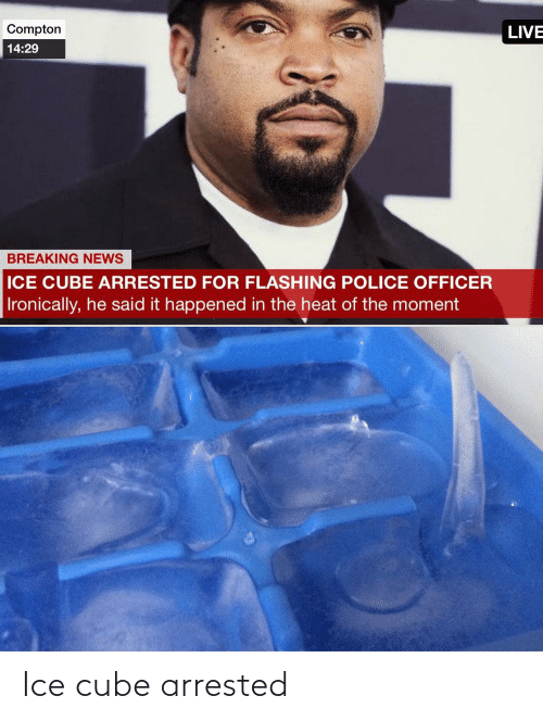 Ice Cube: Ice cube arrested