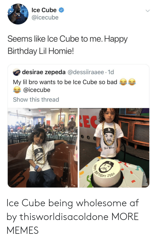 Ice Cube: Ice Cube  @icecube  Seems like lce Cube to me. Happy  Birthday Lil Homie!  desirae zepeda @dessiiraaee 1d  My lil bro wants to be Ice Cube so bad  @icecube  Show this thread Ice Cube being wholesome af by thisworldisacoldone MORE MEMES
