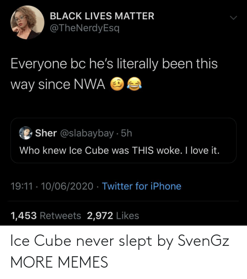Ice Cube: Ice Cube never slept by SvenGz MORE MEMES