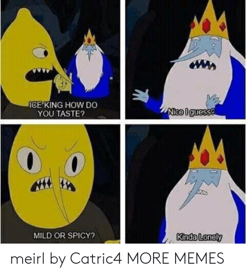 Dank, Memes, and Target: ICE KING HOW DO  YOU TASTE?  MILD OR SPICY?  Kinda Loney meirl by Catric4 MORE MEMES