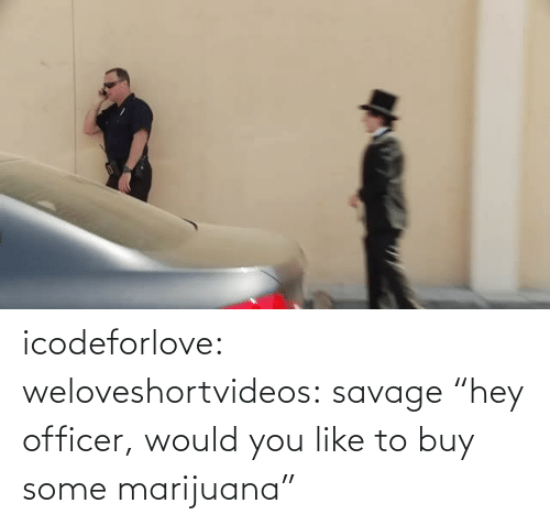 "officer: icodeforlove: weloveshortvideos:  savage  ""hey officer, would you like to buy some marijuana"""