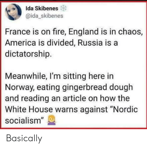 "White House: Ida Skibenes  @ida_skibenes  France is on fire, England is in chaos,  America is divided, Russia is a  dictatorship.  Meanwhile, I'm sitting here in  Norway, eating gingerbread dough  and reading an article on how the  White House warns against ""Nordic  socialism"" Basically"